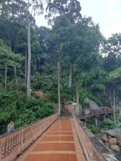Hungout with monkeys at Kuantan